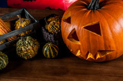 Scary pumpkins, halloween concept Royalty Free Stock Images