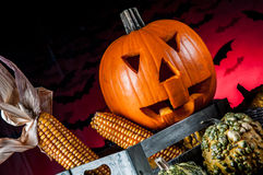 Scary pumpkins, halloween concept Royalty Free Stock Image