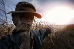 Scary scarecrow in a hat. On a cornfield in cloudy sky background. Halloween holiday concept stock photo