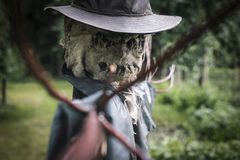 Scary scarecrow in a hat. In garden in cloudy weather. Halloween concept stock photo