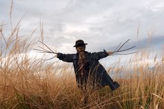 Free Scary Scarecrow In A Hat Royalty Free Stock Images - 126944049
