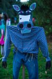 Scary Scarecrows. In Sleepy Hallow, NY the children embrace Halloween by making scary scarecrows placed throughout historic areas of the town Stock Images