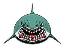 Scary shark. Stylized scary shark isolated on white background vector illustration