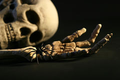 Scary skeleton. On the ground stock photo