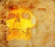 Scary skull Stock Photos