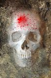 Scary Skull 3 Royalty Free Stock Images