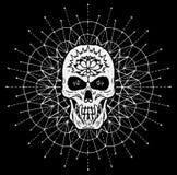 Scary skull against white pattern circle on black background Vector Illustration