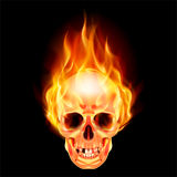 Scary skull on fire. Illustration on black background Stock Photography