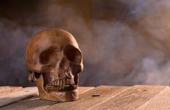 Scary Skull Stock Photo