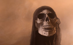 Scary Skull Stock Images