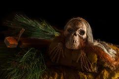 Scary skull head Stock Photo