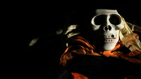 Scary skull monster in the dark Royalty Free Stock Image