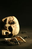 Scary skull and spiders Royalty Free Stock Photos