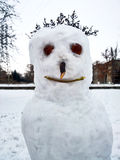 Scary Snowman with hair Stock Images