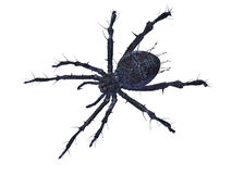 Scary Spider. Big scary spider  on white wth clipping path. CG illustration Stock Photography