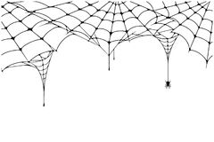 Scary spider web background. Cobweb background with spider. Spooky spider web for Halloween decoration. Vector stock illustration