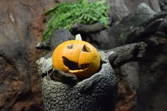 An scary symbol of Halloween Royalty Free Stock Photos