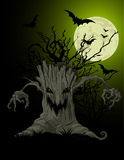 Scary tree background Royalty Free Stock Images