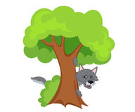 Scary wolf hiding behind a tree. Vector illustration Royalty Free Stock Image