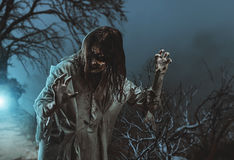 Scary zombie. Halloween. Scary zombie against the background of a tree. Halloween stock photography