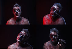Scary zombie. Lightbox 4 in1 Royalty Free Stock Images