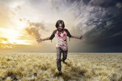 Scary zombie man with bloody clothes standing stock photography