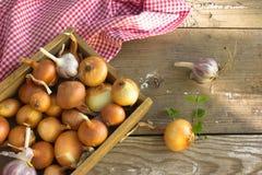 Scatola con cipolle su una vecchia porta Raccolto della cipolla agricoltura Immagini Stock Libere da Diritti