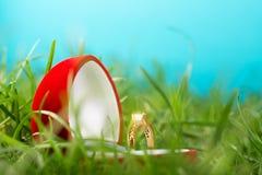Scatola del cuore del velluto con l'anello dorato isolato su erba verde Immagini Stock