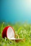 Scatola del cuore del velluto con l'anello dorato isolato sull'erba verde Fotografie Stock
