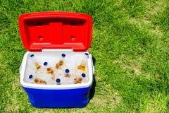 Scatola del dispositivo di raffreddamento di picnic con le bottiglie di birra Immagine Stock Libera da Diritti