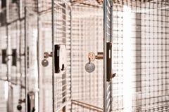 Scatola del meshLock del cavo aperto con le porte aperte e le chiavi d'argento del metallo sopra immagini stock libere da diritti
