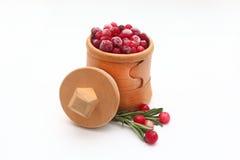 scatola della Betulla-corteccia con i mirtilli rossi Immagini Stock Libere da Diritti