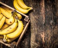 scatola delle banane fresche Immagini Stock Libere da Diritti