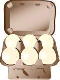 Scatola delle uova Fotografia Stock