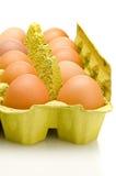Scatola delle uova, Fotografie Stock Libere da Diritti