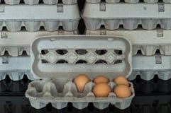 Scatola delle uova con cinque uova organiche del pollo dentro Immagine Stock