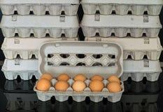 Scatola delle uova con dieci uova organiche del pollo dentro Immagini Stock Libere da Diritti