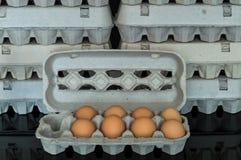 Scatola delle uova con otto uova organiche del pollo dentro Fotografia Stock