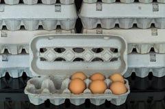 Scatola delle uova con sei uova organiche del pollo dentro Immagine Stock Libera da Diritti