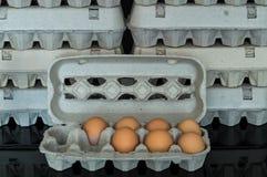 Scatola delle uova con sette uova organiche del pollo dentro Fotografia Stock Libera da Diritti