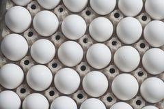 Scatola delle uova del cartone con le uova bianche del pollo Immagini Stock Libere da Diritti
