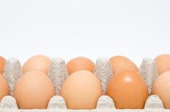 Scatola delle uova del cartone con le uova di Brown Immagini Stock Libere da Diritti