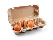 Scatola delle uova del cartone isolata su bianco Fotografie Stock Libere da Diritti
