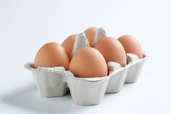 Scatola delle uova riempita fotografia stock libera da diritti