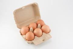 Scatola delle uova - uova in un cartone dell'uovo su fondo bianco Immagini Stock Libere da Diritti