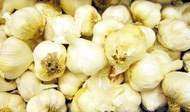 Scatola di aglio fresco Fotografia Stock Libera da Diritti