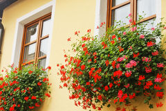 Scatola di finestra austriaca Fotografie Stock
