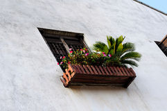 Scatola di finestra del fiore Immagini Stock