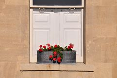 Scatola di finestra di fiori rossi immagine stock