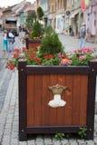 Scatola di legno con il vaso da fiori dei fiori Fotografie Stock